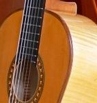 大台ケ原スプルースと楓のギター